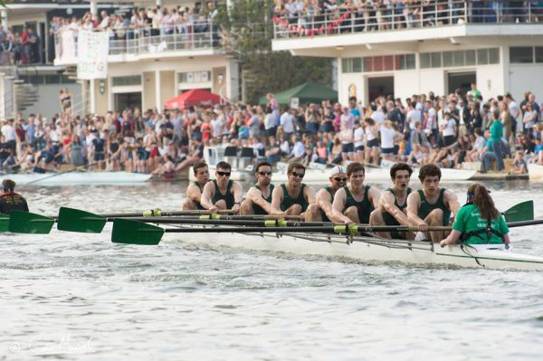 The Jesus Men's Rowing Team in action at Summer Eights